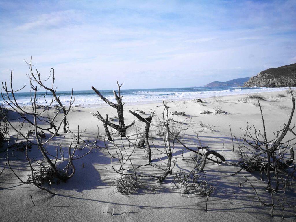 fotos arena de la playa que se encuentra a 2 Km de la casanosa