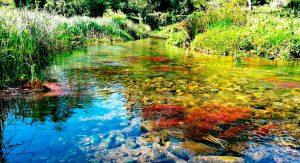 fotos auce del río Lires que pasa al lado de la casanosa